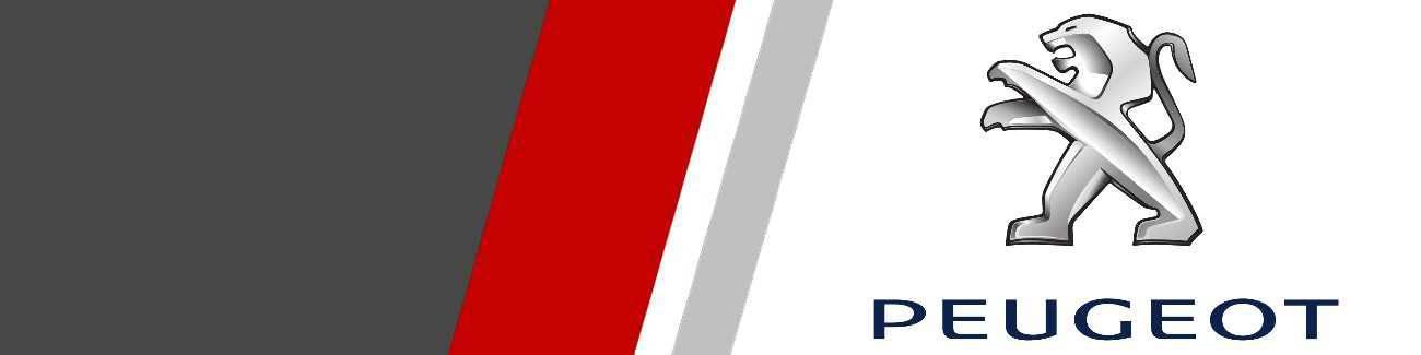 Disques de freins Sport et Racing pour Peugeot