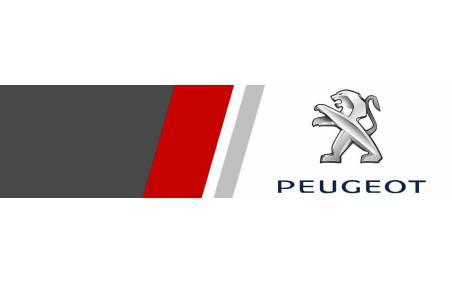 Elargisseurs de voie Peugeot