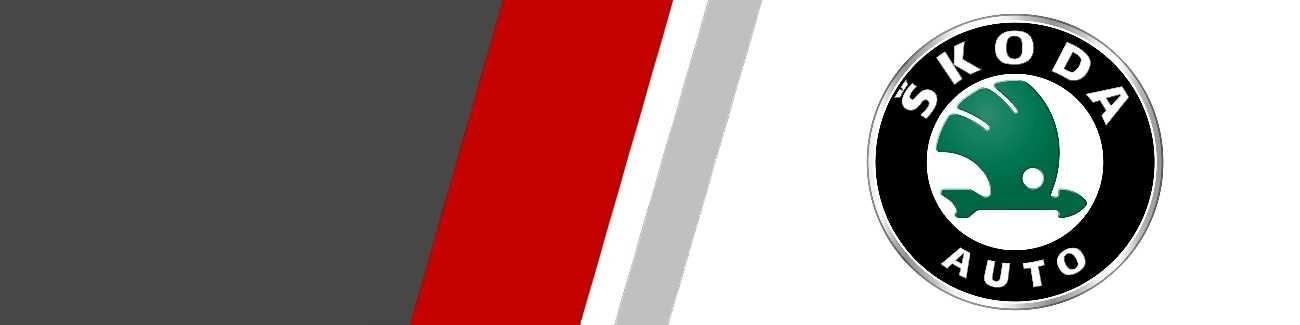 Silencieux d'échappement Sportifs Inox pour Skoda