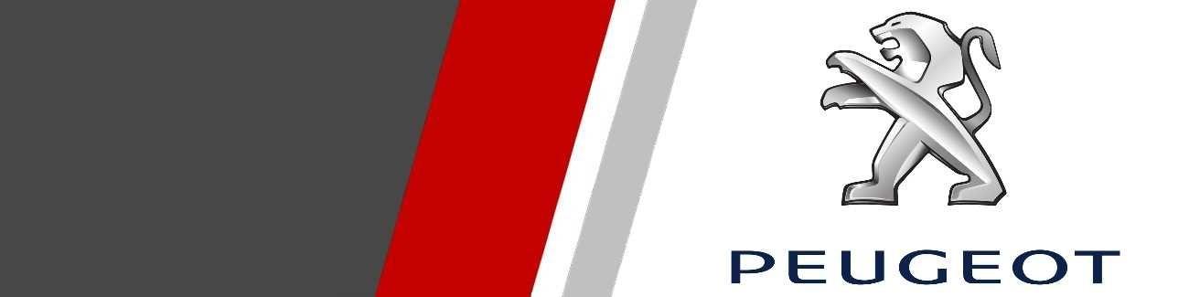 Plaquettes de freins Sport et Racing pour Peugeot