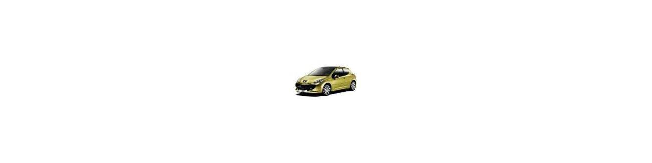 Combinés filetés Peugeot 207