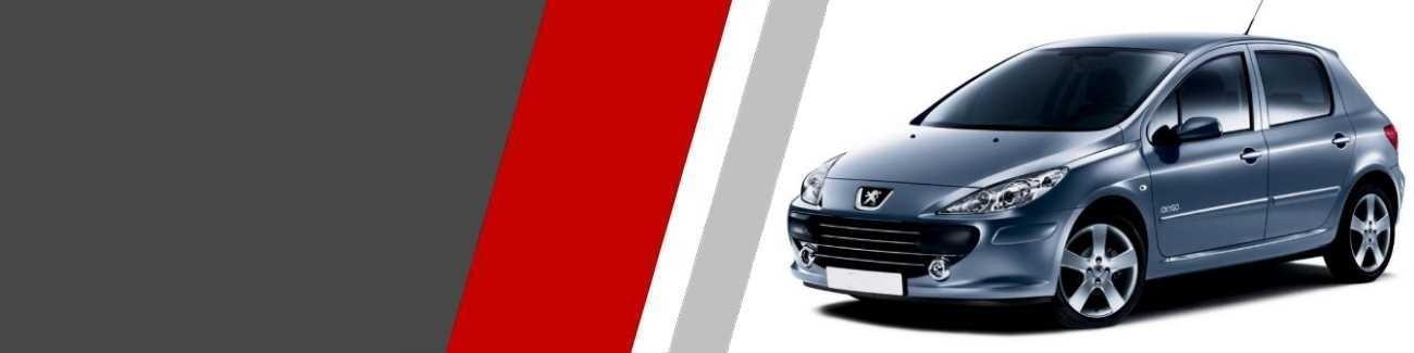 Plaquettes de freins Peugeot 307