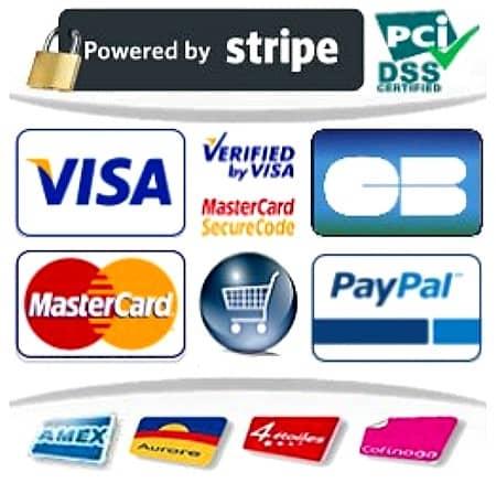 Modes de paiement sécurisés acceptés CB Paypal Virement Chèque